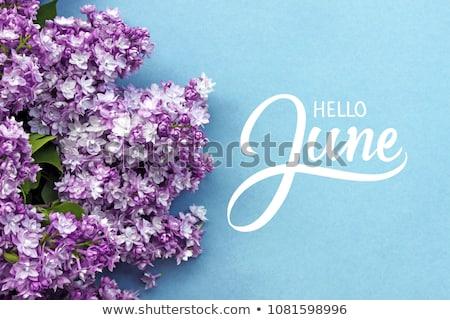 dekoratív · keret · naptár · fa · levél · háttér - stock fotó © itmuryn