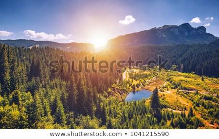 Bucegi mountains Stock photo © photosebia