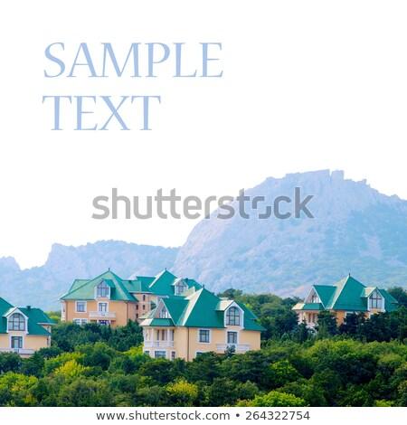 Duplex-type houses isolated on white background. Stock photo © Leonardi