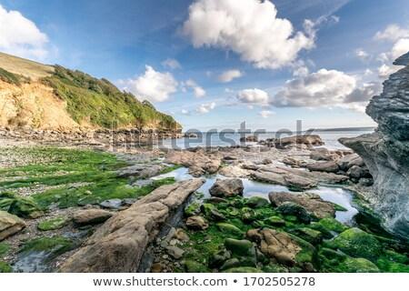 Tengerpart gyönyörű nyár nap festői észak Stock fotó © lovleah