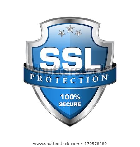 ストックフォト: Ssl · 保護された · 青 · ベクトル · アイコン · デザイン