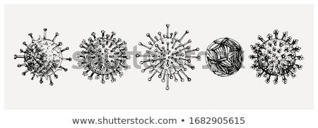Microorganisms or Microbes, vintage engraving Stock photo © Morphart