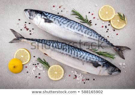 Raw mackerel and vegetables Stock photo © Digifoodstock