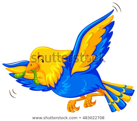 cedo · pássaro · verme · nuvens · sol · projeto - foto stock © bluering