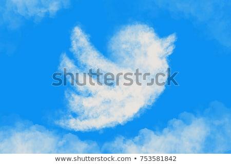 blu · twitter · uccello · logo · turbinio - foto d'archivio © olena