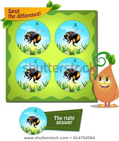 Plek verschil spel kinderen taak Stockfoto © Olena