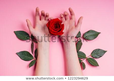 Plaster on female hand Stock photo © CsDeli