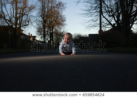 Baby crawling in road Stock photo © IS2