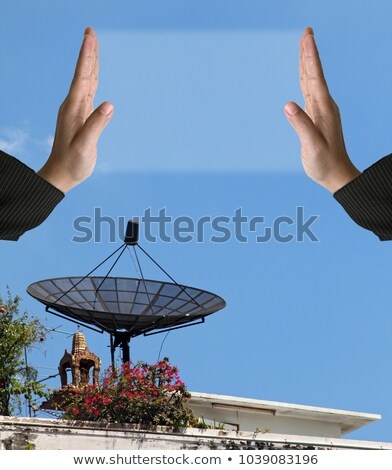 perspective of Big Satellite Dish antenna, vertical Stock photo © vichie81