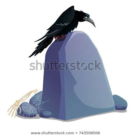 Black crow sitting on grave stone plate with blank surface and space for your text isolated on white Stock photo © Lady-Luck