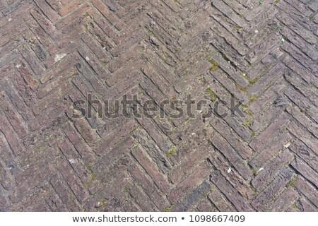 Brick Moss zig zag brick Stock photo © bobkeenan