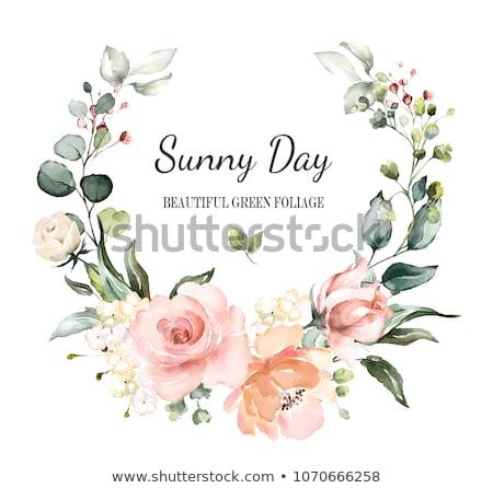 Floral cadre bouquet couronne rose fleurs Photo stock © ESSL