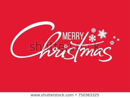 Neşeli Noel kaligrafi metin kar taneleri Stok fotoğraf © orensila