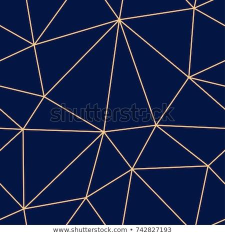 Line triangle blue seamless vector pattern. Stock photo © yopixart