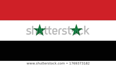 Syrian flag isolated on white Stock photo © daboost