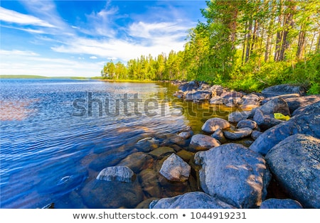 Nature scene with river flows Stock photo © colematt