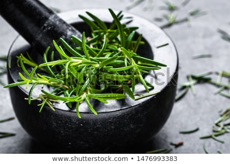 Fraîches romarin épices herbe ingrédient Photo stock © Digifoodstock