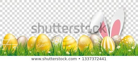Golden Easter Eggs Hare Ears Transparent Header Ostern Stock photo © limbi007