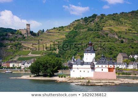 城 ドイツ トール 島 川 ワイン ストックフォト © borisb17