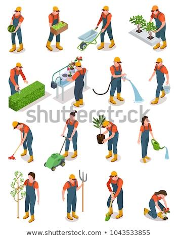 Agrícola trabajador hortalizas carrito vector agricultor Foto stock © robuart