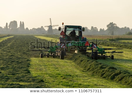 Newly mowed field Stock photo © jsnover
