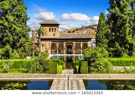 Pałac alhambra basen ogród wody podróży Zdjęcia stock © borisb17