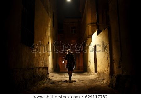 Woman Walking on Street, Silhouettes of Buildings Stock photo © robuart