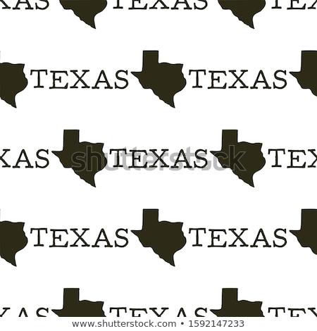 Texas padrão silhueta formas texto vintage Foto stock © JeksonGraphics