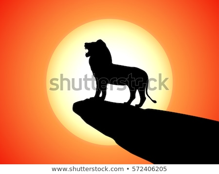 Afrikaanse leeuw zon zonsondergang natuur steen Stockfoto © liolle