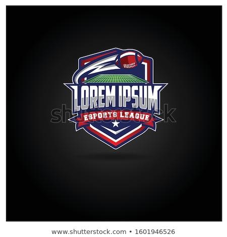 американский фантазий футбола лига жетоны иллюстрация Сток-фото © enterlinedesign