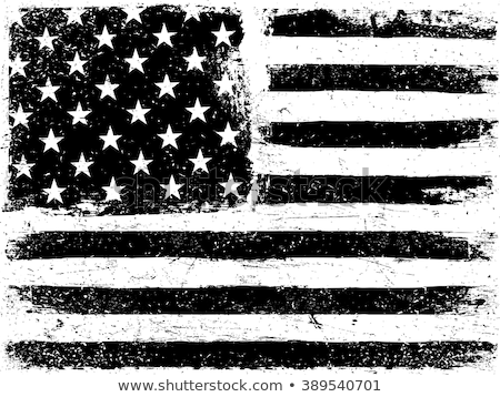 Vektor grunge zászló Egyesült Államok Amerika vízszintes Stock fotó © kyryloff