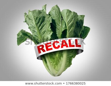 Salad Recall Stock photo © Lightsource