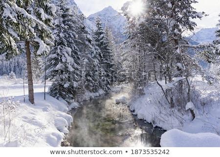 winter stream stock photo © simply