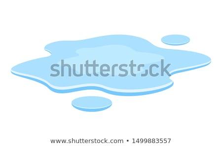 水たまり 水 美しい リング 春 抽象的な ストックフォト © leeser