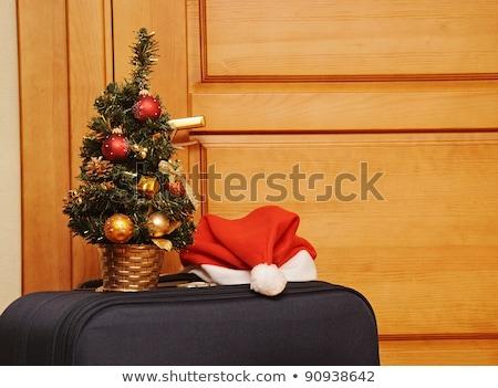 Jeden czarny walizkę posiedzenia wejście wewnątrz Zdjęcia stock © inxti