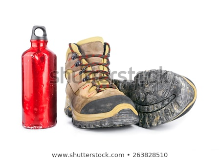 High heels and hiking shoes on white Stock photo © Ariwasabi