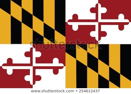 Maryland · zászló · nagy · illusztráció · USA · szalag - stock fotó © tony4urban
