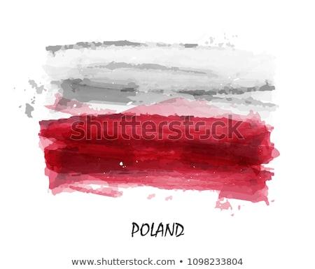 пальто · оружия · Польша · изображение · спорт · флаг - Сток-фото © perysty