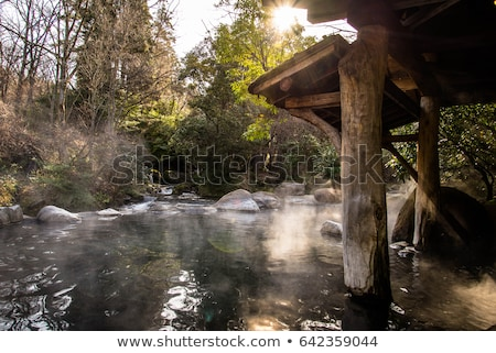 steamy hot spring Stock photo © prill