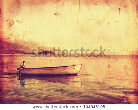 eenzaam · boom · water · zonsondergang · oceaan · strand - stockfoto © marinini