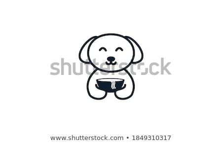 Huisdier voedsel elektrische water kom hond Stockfoto © cheyennezj