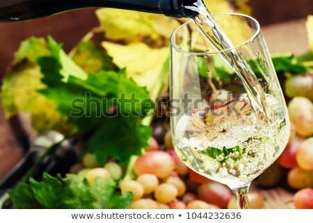 Riesling spritzer Stock photo © Zerbor