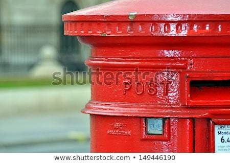 kutu · mavi · kedi · kum · bakım · konteyner - stok fotoğraf © zzve