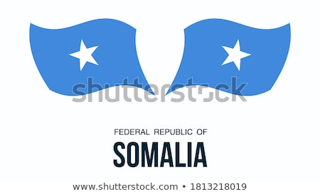 набор Кнопки Сомали красочный Сток-фото © flogel
