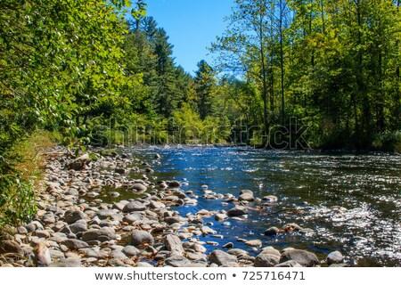 Farmington River Stock photo © ArenaCreative