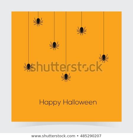 Colorido teia da aranha abstrato ícone negócio projeto Foto stock © cidepix