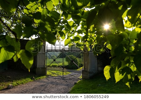 wrought iron door to the garden with beautiful shadow stock photo © meinzahn