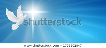 カトリック教徒 教会 レトロな 建物 クロス 背景 ストックフォト © maxmitzu