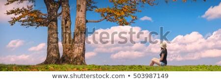 Solo árbol cielo azul otono tiempo cielo Foto stock © shihina