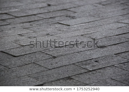 Brown Concrete Pavement Laid as Rectangles. Stock photo © tashatuvango